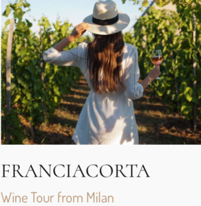 Franciacorta Wine Tour from Milan